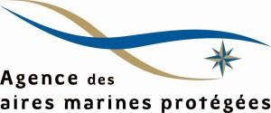 Logo_AgenceAMP_petit