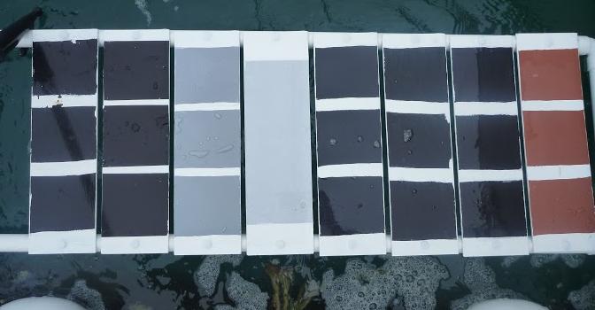2 mois dans l'eau : des nouvelles des plaques-test !